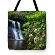 Silver Run Falls Mountain Laurel Tote Bag
