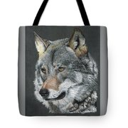 Silver Shadow Tote Bag