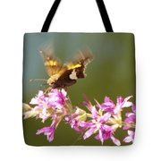 Silver Spotted Skipper Landing On Blooms                 August               Indiana Tote Bag