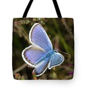 Silver-studded Blue Butterfly Tote Bag