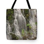 Silverdale Falls 2 Tote Bag