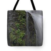 Silverdale Falls Tote Bag
