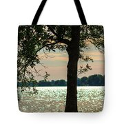 Silvery Sunset Tote Bag