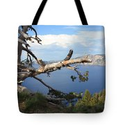 Silvery Tree Over Crater Lake Tote Bag