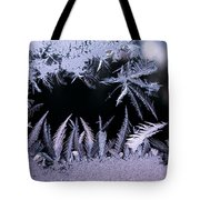 Silvery Window Fronds Tote Bag
