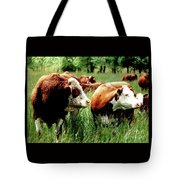 1992 Oregon State University Art About Agriculture Directors Award Winner.  Tote Bag
