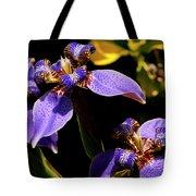 Simple Beauty IIi Tote Bag