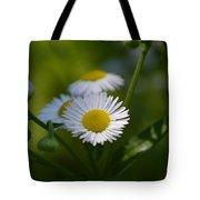Simple Elegance Tote Bag