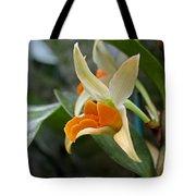 Simple Grace Tote Bag