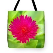 Simple Magenta In A Garden Of Green Tote Bag