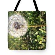 Simplicity #1  Tote Bag