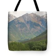 Simply Colorado 2 Tote Bag