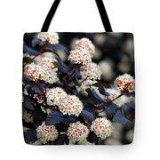 Summer Wine Ninebark Blossom Tote Bag
