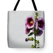 Simply Stated Tote Bag