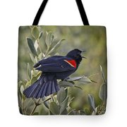 Sing Me A Song, Red-winged Blackbird Tote Bag