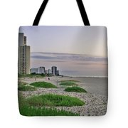 Singer Island Florida Beach Tote Bag