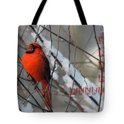 Singing Cardinal Christmas Card Tote Bag