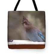 Singing Jay Tote Bag