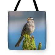 Singing Sparrow Tote Bag