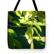 Single Angel's Trumpet Tote Bag