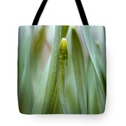 Single Blade Of Onion Grass Leaning - Color Version Tote Bag