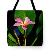 Single Blossom Tote Bag