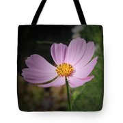 Single Cosmos Tote Bag