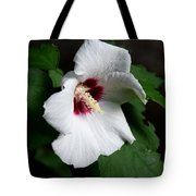 Single Rose Sharon Flower Tote Bag