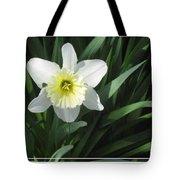 Single Daffodil Tote Bag