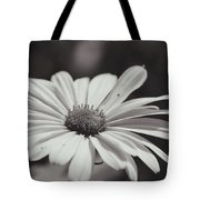 Single Daisy Bw Tote Bag
