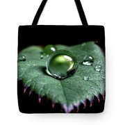 Single Drop Tote Bag