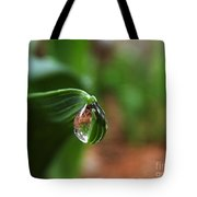 Single Drop Of Rain Water  Tote Bag