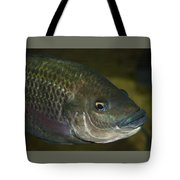 Single Fish Swimming Tote Bag
