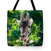 Single Giraffe Tote Bag