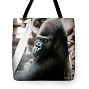 Single Gorilla Sitting Alone Tote Bag