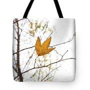Single Leaf In Fall Tote Bag