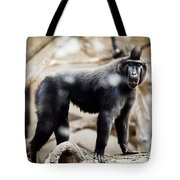 Single Macaque Monkey Standing Tote Bag