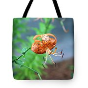 Single Orange And Black Tiger Lily Tote Bag