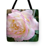 Single Peace Rose Tote Bag