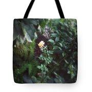 Single Perfect Rose Tote Bag