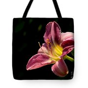 Single Pink Day Lily Tote Bag