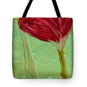 Single Poppy Tote Bag