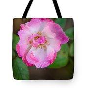 Single Rose 2 Tote Bag