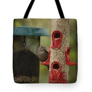 Single Songbird At Feeder Tote Bag