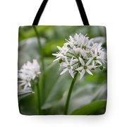 Single Stem Of Wild Garlic Tote Bag