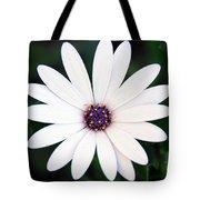 Single White Daisy Macro Tote Bag