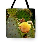 Single Yellow Cactus Bloom 050715a Tote Bag