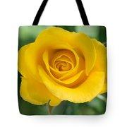Single Yellow Rose Tote Bag