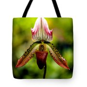 Singular Beauty Tote Bag
