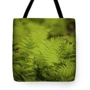 Singular Tote Bag